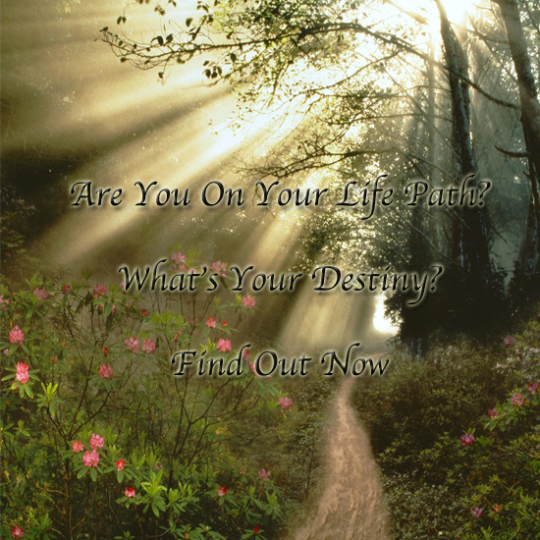 Free Numerology Life Path Report-Click Picture For Details