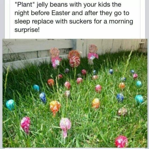 Plant jelly beans