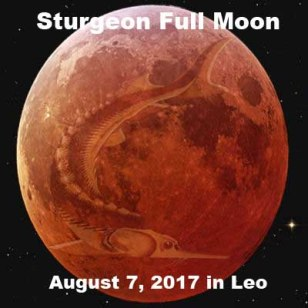 August 7, 2017 in Leo