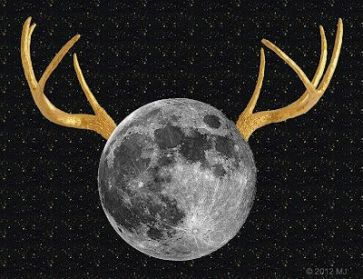 July Full Moon - Buck and Thunder